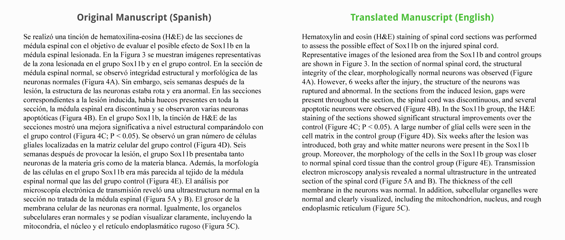 sample scientific editing and translation work editing and translation samples
